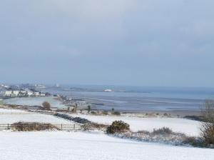 snowy field 064